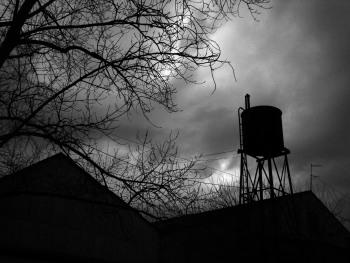 Deadly Field | Photo by Demma on sxc.hu
